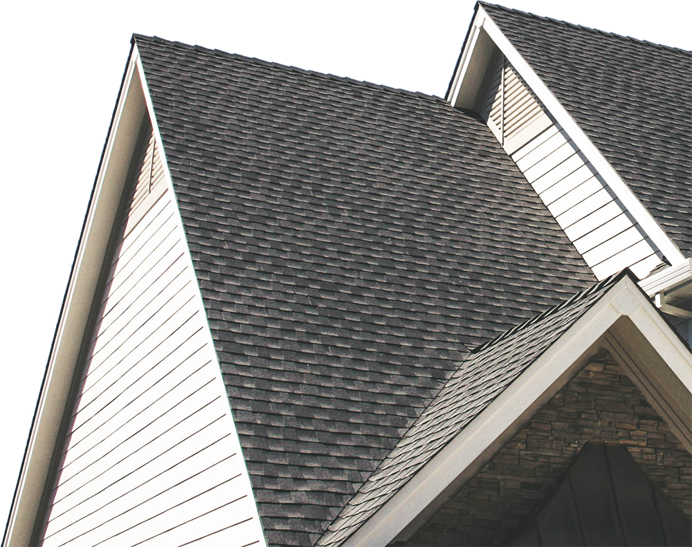 Century Roofing Roof